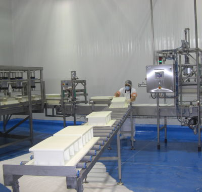 Reconditioned cheese making equipment