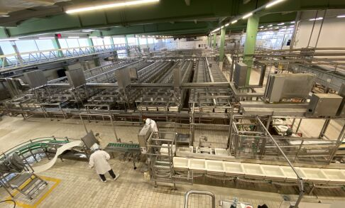 Purchase complete cheese production plant FrieslandCampina Rijkevoort